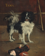 Manet, Tama, il cane giapponese.jpg