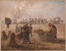 Millet, Raccolta del grano saraceno.jpg