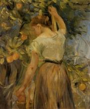 Morisot, Giovane donna che coglie arance.jpg