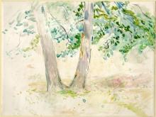 Morisot, Studio di alberi.jpg