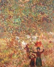 Plinio Nomellini, La raccolta delle olive