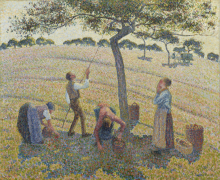 Pissarro Camille, La raccolta delle mele [1888].png