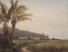 Pissarro Camille, Palme da cocco in riva al mare | Cocotiers au bord de la mer, Saint-Thomas | Coconut by the sea, St. Thomas
