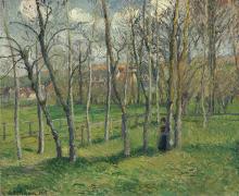 Pissarro Camille, Prato di Bazincourt.png