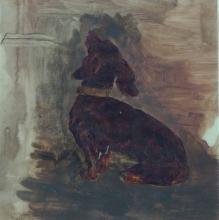Giovanni Battista Quadrone, Cane bassotto