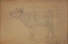 Giovanni Battista Quadrone, Nell'aia del torero