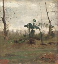 Giovanni Battista Quadrone, Tempo grigio in Sardegna