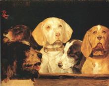 Giovanni Battista Quadrone, Teste di cani