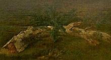 Rousseau Théodore, Studio di un ramo con foglie fini | Étude d'une branche avec des feuilles fines | Study of a branch with fine leaves