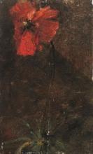 Giovanni Segantini (attribuito a), Papavero