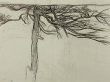 Giovanni Segantini, Studio di un albero   Studie zu einem Baum