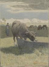 Giovanni Segantini, Vacca bruna all'abbeveratoio [1891]