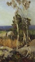 Tommasi Adolfo (attribuito a), Alberi e massi in paesaggio.jpg