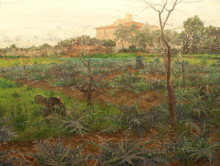 Tommasi Adolfo, Primavera