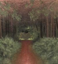 Vallotton, Sentiero rosa tra gli abeti e le felci.jpg