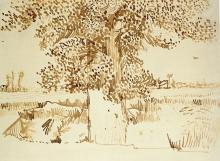 Van Gogh, Un tronco d'albero | Un tronc d'arbre | A trunk of a tree