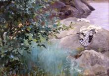Zorn, Arbusti di ontano | Albuskar | Erlenbüsche | Alder shrubs