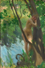 Zorn, Bagnante | Badgäst | Bather