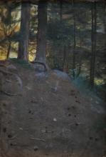 Zorn, Collina boscosa | Colline boisée | Wooded hill