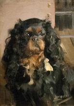 Zorn, Il cane dei Rikoff   Le chien des Rikoff   The dog of the Rikoff family