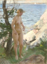Zorn, Nudo sulla spiaggia | Naken på strand | Nude at the beach