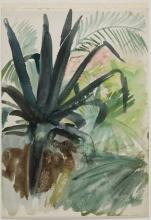 Zorn, Studio di foglie per Ninfa dell'amore | Bladstudie till Kärleksnymf | Study of leaves for Love nymph