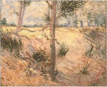 van Gogh, Alberi in un campo in una giornata di sole   Arbres dans un champ sur une journée ensoleillée   Trees in a field on a sunny day