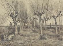 van Gogh, Betulle capitozzate | Knotberken | Bouleaux étêtés | Pollard birches