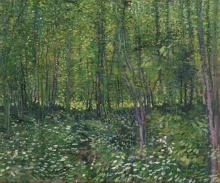 van Gogh, Bosco con sottobosco | Bos met kreupelhout | Forêt avec sous-bois | Trees and undergrowth