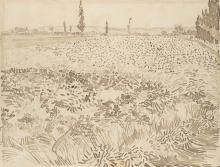 van Gogh, Campo di grano | Champ de blé | Wheat field