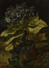 Vincent van Gogh, Cineraria