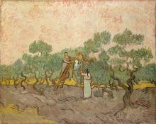 van Gogh, Donne che raccolgono olive.jpg