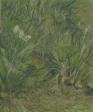 van Gogh, Giardino con farfalle | Tuin met vlinders | Jardin avec papillons | Garden with butterflies