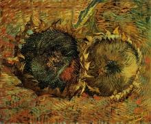van Gogh, Girasoli appassiti (Due girasoli recisi) | Verblühte Sonnenblumen (Zwei abgeschnittene Sonnenblumen) | Tournesols fanés (Deux tournesols coupés) | Faded sunflowers (Two cut sunflowers)