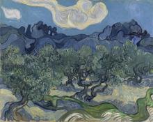 van Gogh, Gli ulivi.jpg