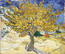 van Gogh, Il gelso   Le mûrier   The mulberry tree