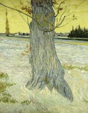 van Gogh, Il vecchio tasso   Le vieil if   The old yew tree