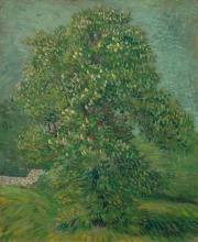 van Gogh, Ippocastano in fiore | Bloeiende paardenkastanje | Marronnier d'Inde en fleur | Horse chestnut tree in blossom