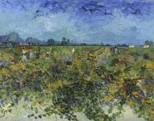 van Gogh, La vigna verde   De groene wijngaard   Le vignoble vert   The green vineyard