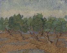 van Gogh, Oliveto   Olijfgaard   Oliveraie   Olive grove