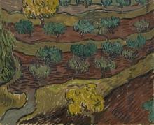 van Gogh, Olivi su un pendio di montagna | Olijfbomen op een berghelling | Oliviers sur une pente de montagne | Olive trees on a mountain slope