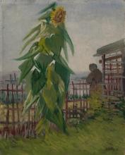 van Gogh, Orto con girasole   Moestuin met zonnebloem   Potager avec tournesol   Vegetable garden with sunflower