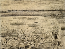 van Gogh, Palude con ninfee | Marais avec nénuphars | Marsh with water lilies