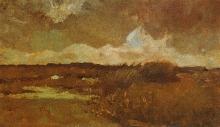 van Gogh, Palude   Marais   Marsh