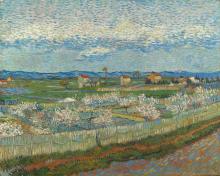 Van Gogh, Peschi in fiore | Pêchers en fleurs | Peach trees in blossom