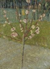 van Gogh, Pesco in fiore | Bloeiende perzikboom | Pêcher en fleurs | Peach tree in blossom