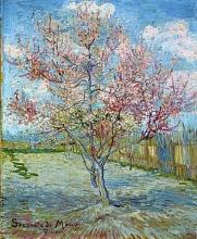 van Gogh, Pesco rosa ('Souvenir de Mauve') | Roze perzikbomen ('Souvenir de Mauve')