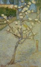 van Gogh, Piccolo pero in fiore   Perenboompje in bloei   Petit poirier en fleur   Small pear tree in blossom