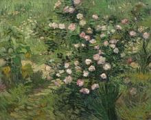 van Gogh, Rose   Roses