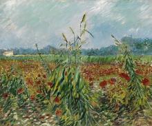 van Gogh, Spighe di grano verdi | Épis de blé verts | Green ears of wheat